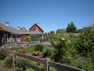 Pickering Farm Issaquah WA