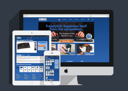 Kinesis Computer Ergonomics website designed by Fingerprint Marketing