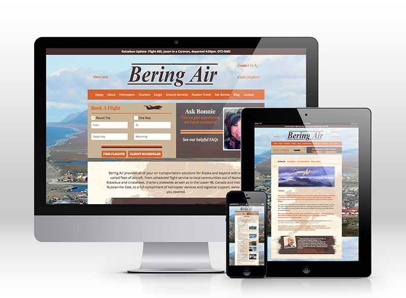 Airline Web Design