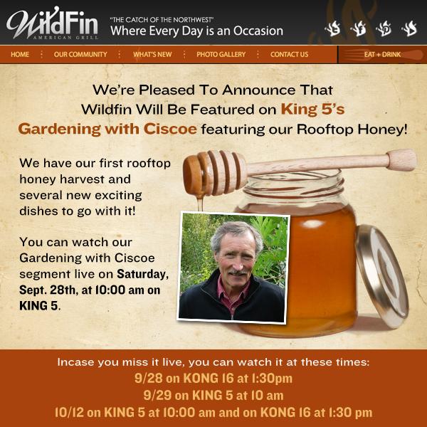 Wildfin Rooftop Honey Announcement
