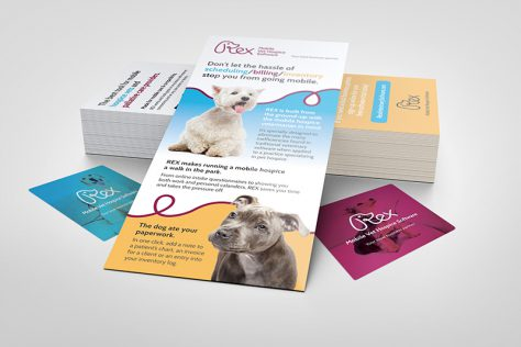 REX Veterinary rack cards designed by Fingerprint Marketing