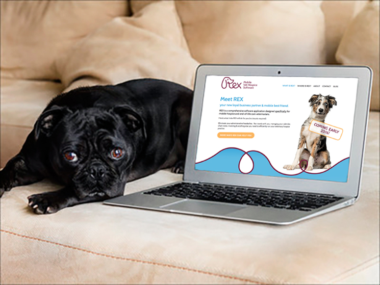 REX Veterinary website designed by Fingerprint Marketing (2015)