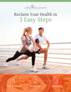 Burien Wellness Lead Magnet designed by Fingerprint Marketing