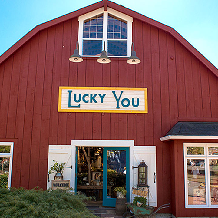 Lucky You website designed by Fingerprint Marketing