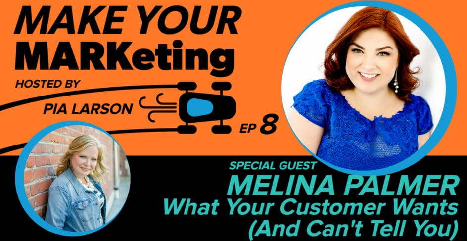 Melina Palmer and What Your Customer Wants (And Can't Tell You)